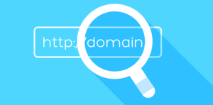Domain name checker