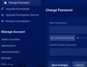 How to reset Cpanel password on client area